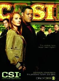 Смотреть онлайн: Место преступления: Лас-Вегас (2010, 11 сезон)